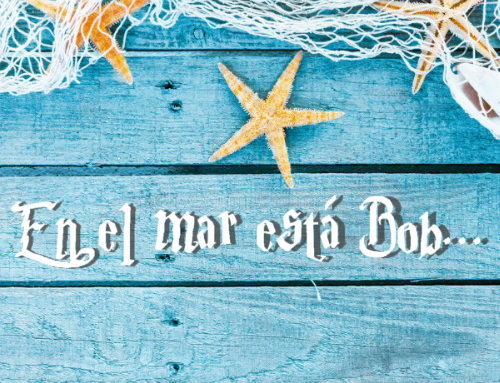 El Boch – En el Mar Esta Bob (Official Aluminium Version)